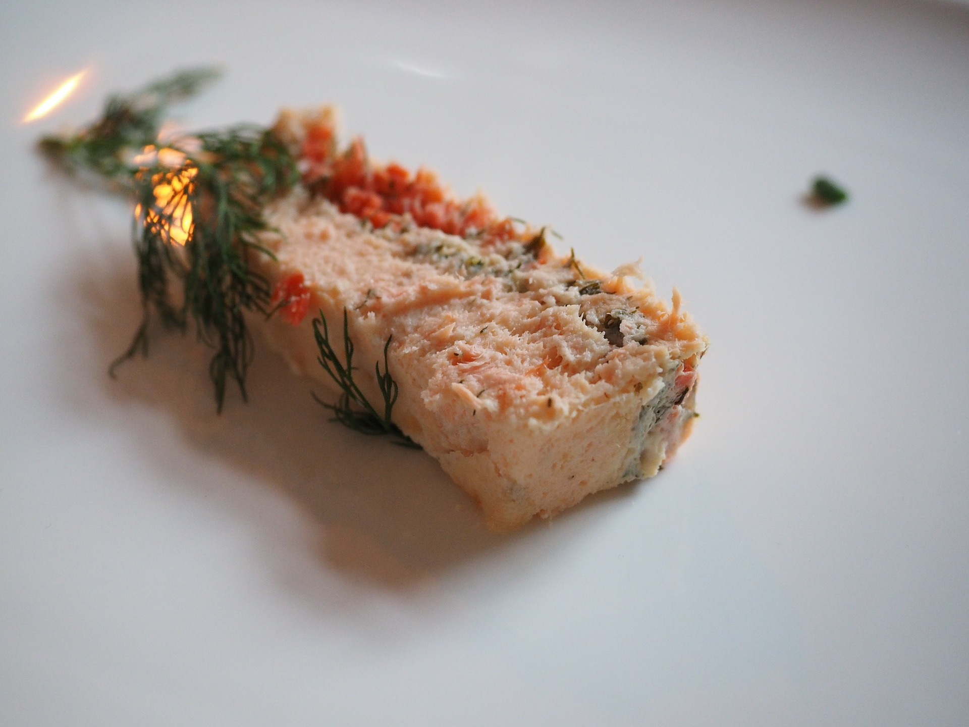 Pâté terrine de saumon