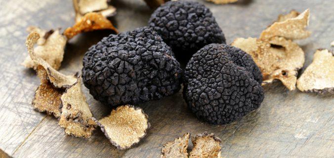 Comment choisir et cuisiner la truffe noire